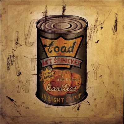 シングル/Janitor (Album Version)/Toad The Wet Sprocket
