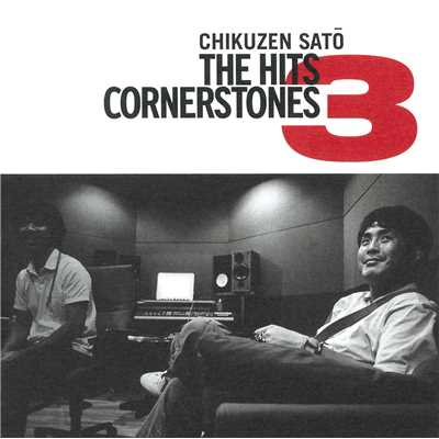 THE HITS~CORNERSTONES 3~/佐藤竹善