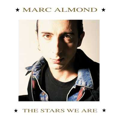 シングル/Something's Gotten Hold of My Heart/Marc Almond & Gene Pitney
