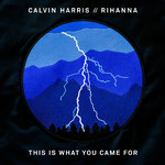 シングル/This Is What You Came For/Calvin Harris feat. Rihanna