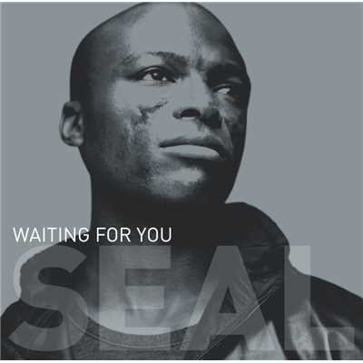 "アルバム/Waiting For You (12""/CD Maxi 42656)/Seal"