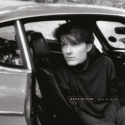 アルバム/Gone To Earth (Remastered 2003)/David Sylvian