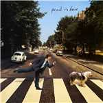 Drive My Car/Paul McCartney