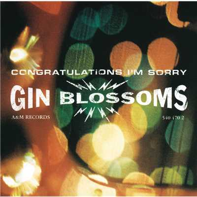 シングル/I Can't Figure You Out/Gin Blossoms