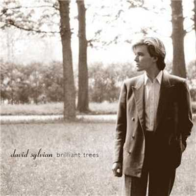 シングル/Red Guitar (2003 - Remaster)/David Sylvian
