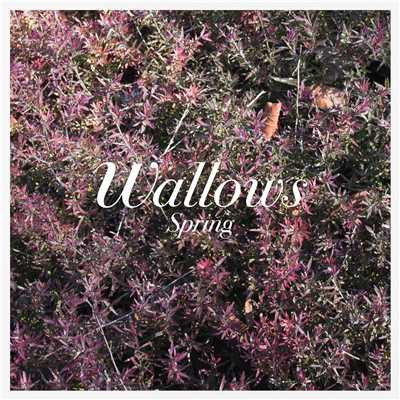 シングル/Ground/Wallows