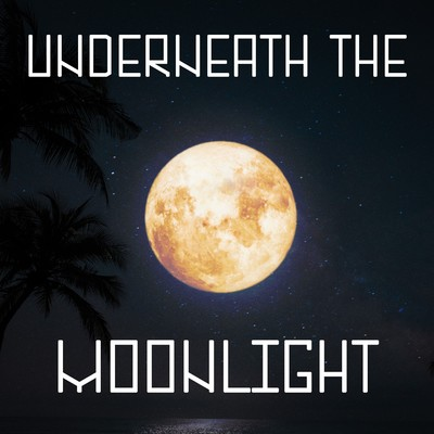 アルバム/Underneath The Moonlight/Various Artists