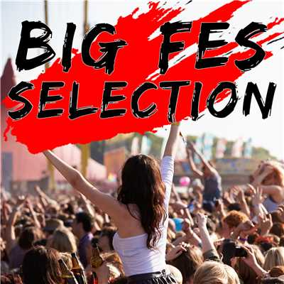 アルバム/BIG FES SELECTION/Various Artists