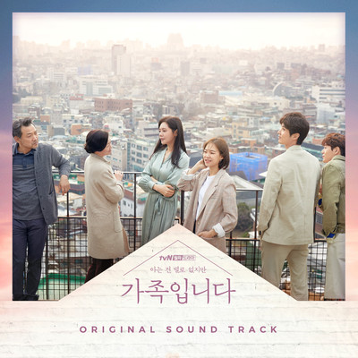 アルバム/My Unfamiliar Family (Original Television Soundtrack)/Various Artists