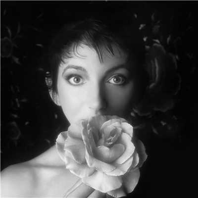 アルバム/Remastered Pt. II/Kate Bush