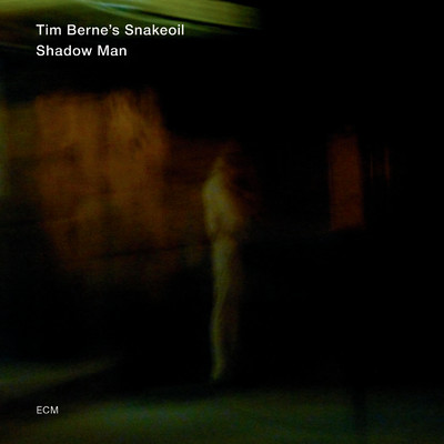 ハイレゾアルバム/Shadow Man/Tim Berne's Snakeoil