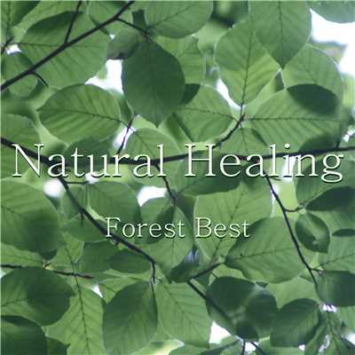 アルバム/Natural Healing Forest Best/神山純一