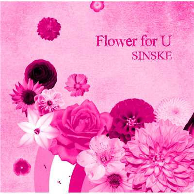 アルバム/Flower for U/SINSKE