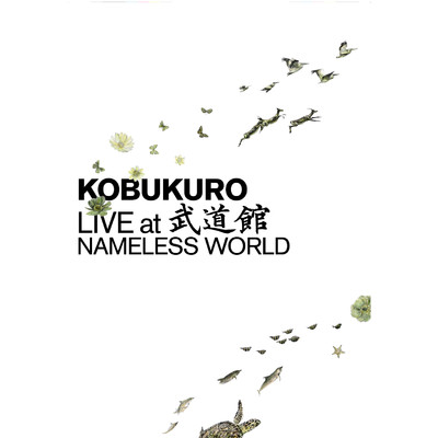 アルバム/KOBUKURO LIVE at 武道館 NAMELESS WORLD/コブクロ