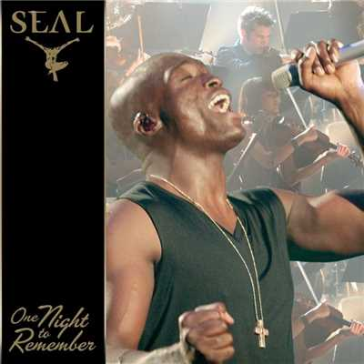 Lullaby (Live)/Seal
