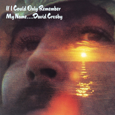 シングル/Music Is Love/David Crosby