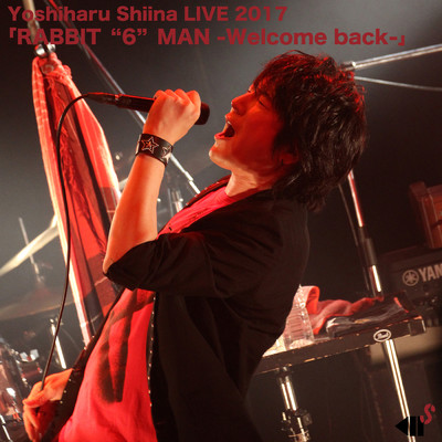 "アルバム/Yoshiharu Shiina LIVE 2017「RABBIT ""6"" MAN -Welcome back-」/椎名慶治"
