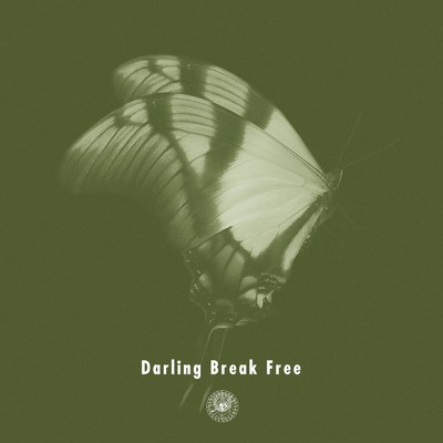 シングル/Darling Break Free (Instrumental)/AmPm