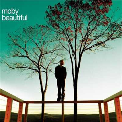 アルバム/Beautiful (Remixes)/Moby