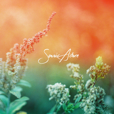 シングル/When the Summer Ends/Savoir Adore
