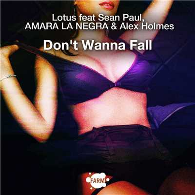 アルバム/Don't Wanna Fall/Lotus
