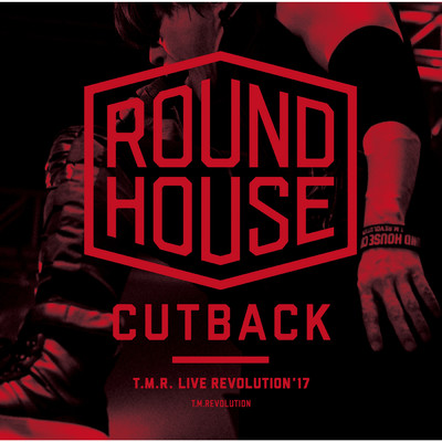 SE -ROUND HOUSE CUTBACK-(the ether〜CLOUD NINE instrumental)/T.M.Revolution