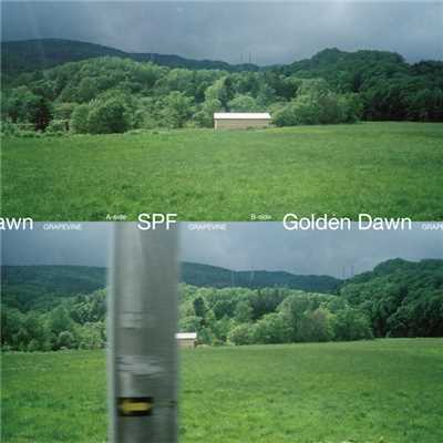 アルバム/SPF / Golden Dawn/GRAPEVINE