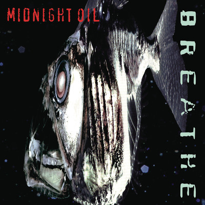 シングル/In The Rain (Album Version)/Midnight Oil