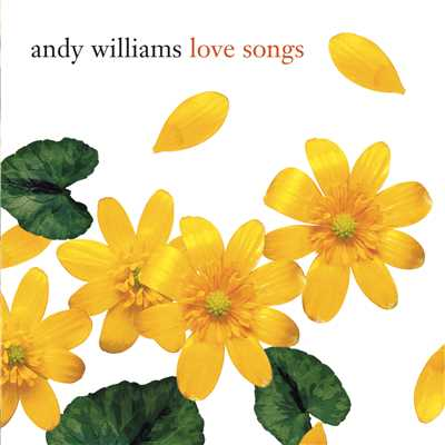 A Time for Us/Andy Williams