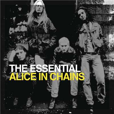 アルバム/The Essential Alice In Chains/Alice In Chains