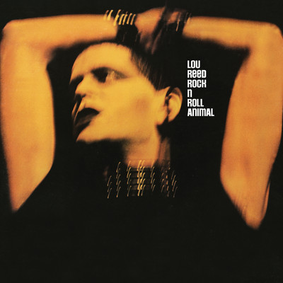 アルバム/Rock 'n' Roll Animal (Live)/Lou Reed
