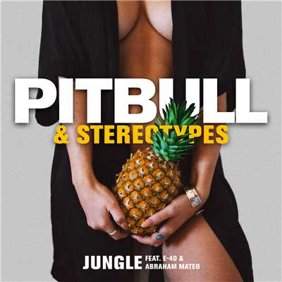 シングル/Jungle/Pitbull & Stereotypes feat. E-40 & Abraham Mateo
