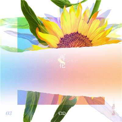 [Re:flower] PROJECT #3/EXID