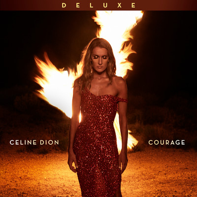シングル/The Hard Way/Celine Dion